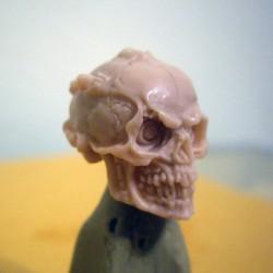 Skull (Robotic)